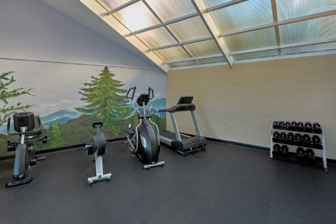 Resort Exercise Room 3 Bedroom 3 Bath Condo - My Pigeon Forge Retreat