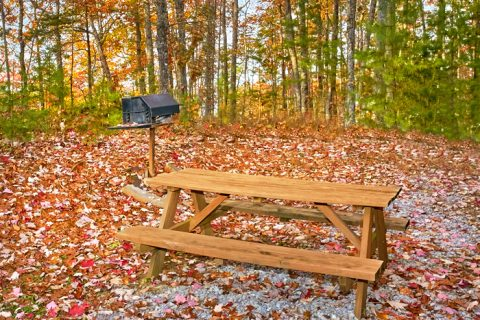 Private cabin with picnic table and grill - Oakland #4