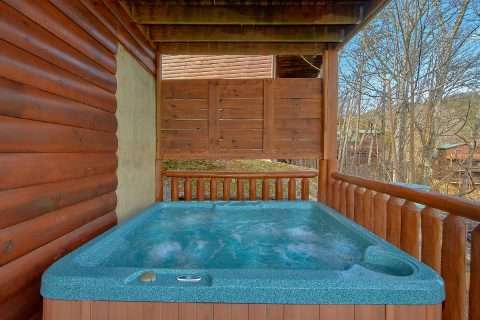 Private Hot Tub 4 Bedroom Cabin Sleeps 14 - On The Rocks