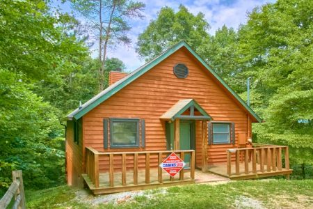 Tennessee Dreamin: 1 Bedroom Sevierville Cabin Rental