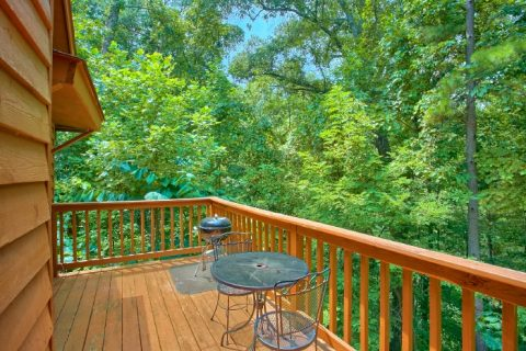 Rustic 1 Bedroom Cabin in a Wooded Setting - Passion Pointe