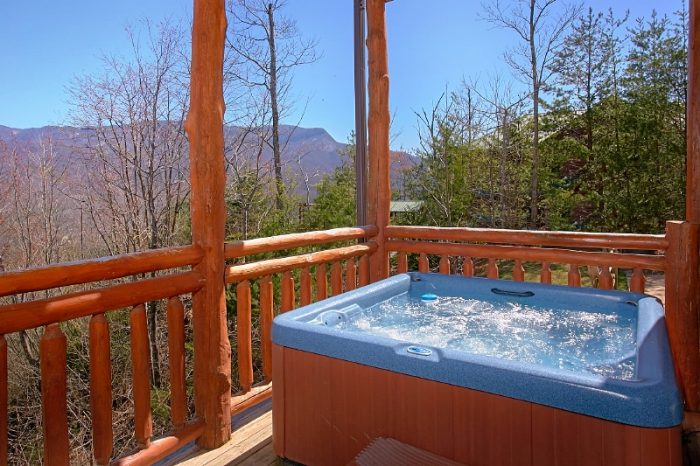 Group Size Cabin with Private Hot Tub and Views - Pool and a View Lodge
