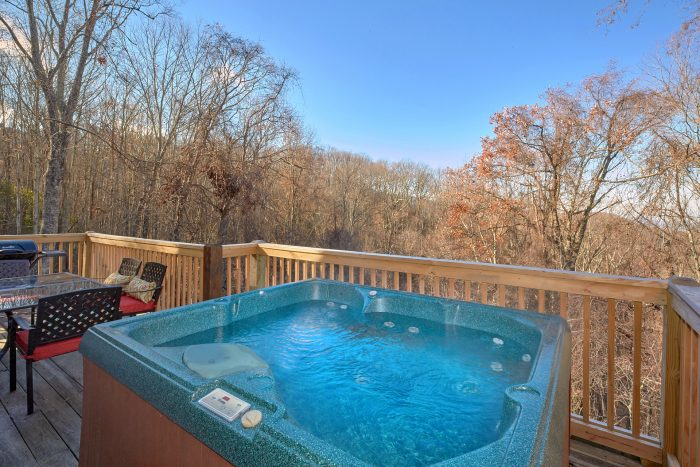 Private Hot Tub 3 Bedroom Cabin Sleeps 8 - Rare Breed