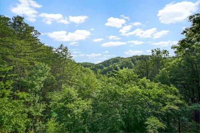 1 Bedroom Smoky Mountain Cabin Rental - Serenity Ridge