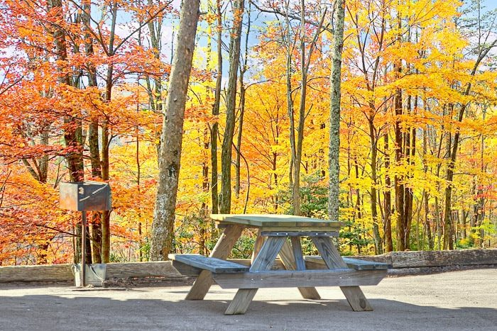 Cabin with Picnic Table - Smokies View