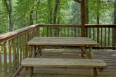 1 Bedroom Cabin with Picnic Table