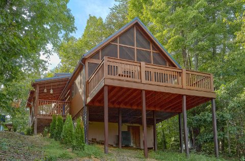 Wears Valley Cabin rental with mountain views - Sneaky Bear Getaway
