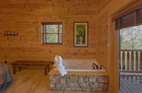9 bedroom cabin with Private Jacuzzi tubs - Summit View Lodge