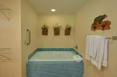 Full Bathroom with Jacuzzi Tub - Tennessee Tranquility