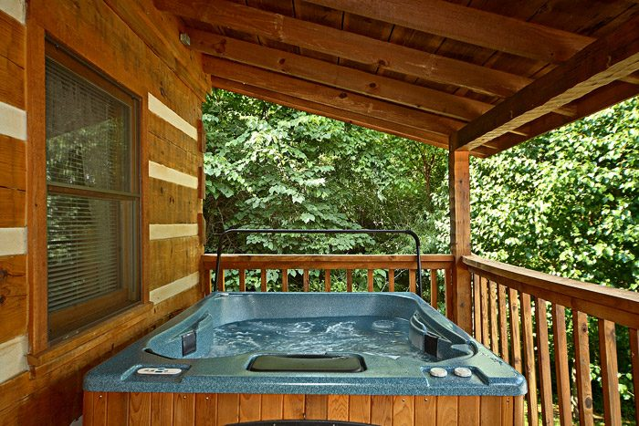 Cabin with Heated hot Tub - This Away