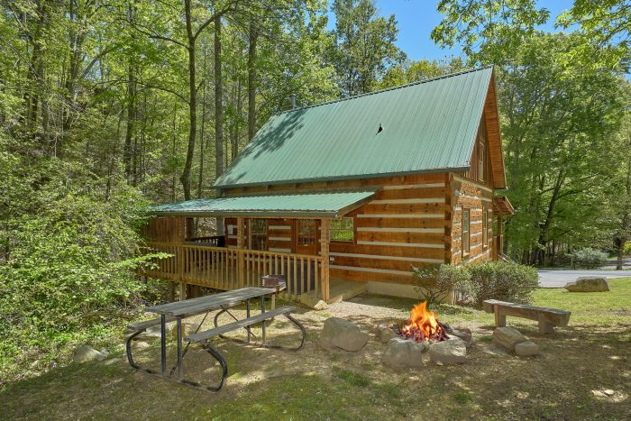 Turtle Dovin' Cabin Rental Photo