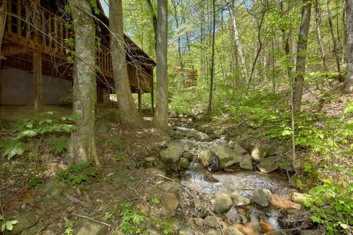 1 bedroom cabin overlooking a mountain stream - Turtle Dovin'