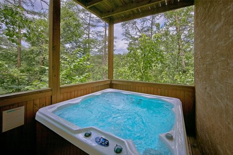 5 Bedroom cabin with Private Hot Tub - Wilderness Lodge